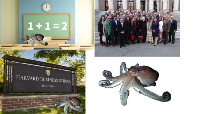 Octopus teaches math at harvard